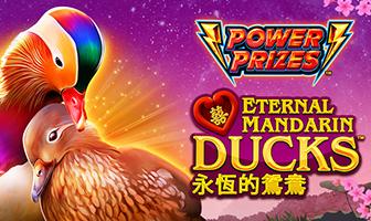 Greentube - Power Prizes - Eternal Mandarin Ducks