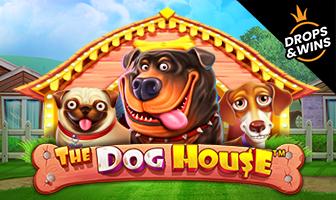 PragmaticPlay - Dog House