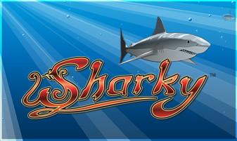 NOVO - Sharky™