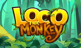 QS - Loco The Monkey